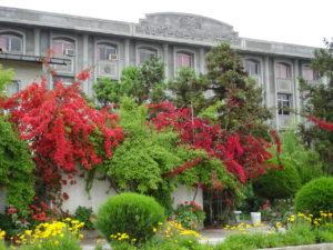 دانشگاه علوم فنون مازندران