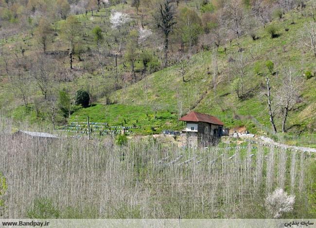 روستای تهمتن کلا