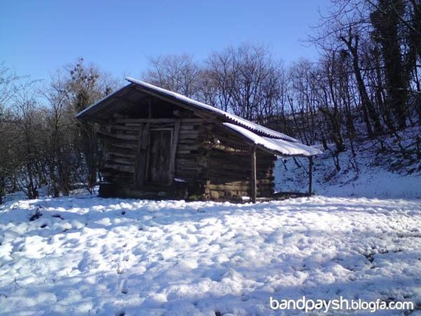 روستای نرگس کتس